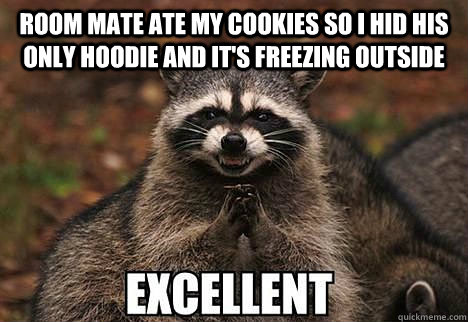 room mate ate my cookies so I hid his only hoodie and it's freezing outside  - room mate ate my cookies so I hid his only hoodie and it's freezing outside   evil racoon