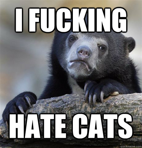 I FUCKING HATE CATS - I FUCKING HATE CATS  Confession Bear