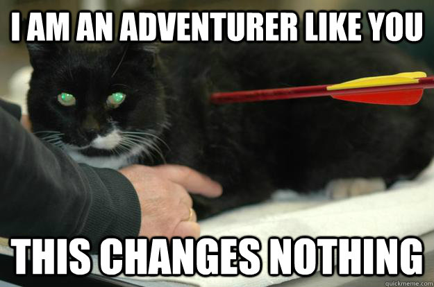 I am an adventurer like you This changes nothing  Worlds Toughest Cat
