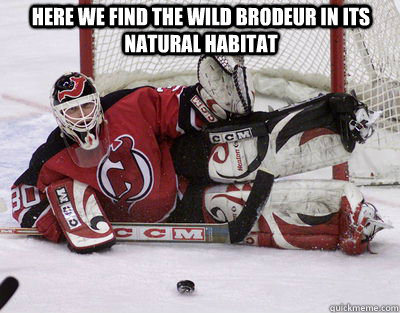 Here we find the wild Brodeur in its natural habitat - Here we find the wild Brodeur in its natural habitat  Brodeur