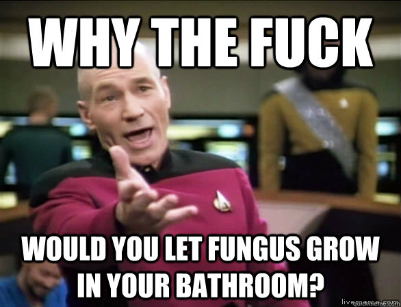 why the fuck would you let fungus grow in your bathroom? - why the fuck would you let fungus grow in your bathroom?  Annoyed Picard HD