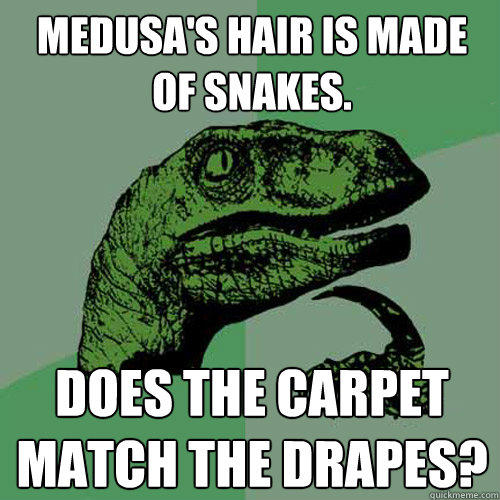 Medusa's hair is made of snakes. does the carpet match the drapes? - Medusa's hair is made of snakes. does the carpet match the drapes?  Philosoraptor