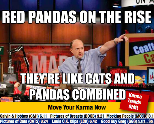 RED PANDAS ON THE RISE THEY'RE LIKE CATS AND PANDAS COMBINED - RED PANDAS ON THE RISE THEY'RE LIKE CATS AND PANDAS COMBINED  Mad Karma with Jim Cramer