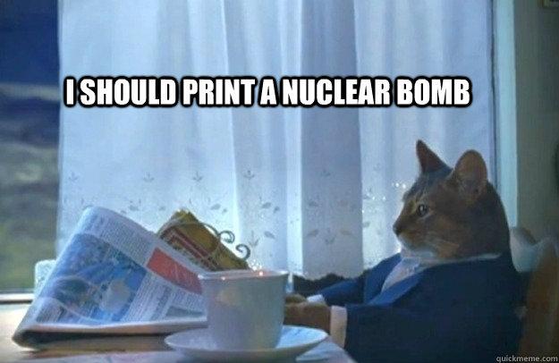 i should print a nuclear bomb - i should print a nuclear bomb  Sophisticated Cat