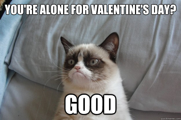you're alone for valentine's day? good - you're alone for valentine's day? good  Misc