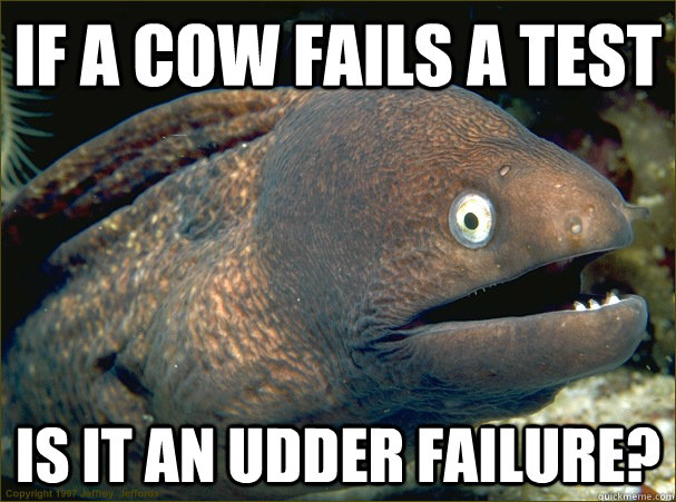if a cow fails a test is it an udder failure?  Bad Joke Eel