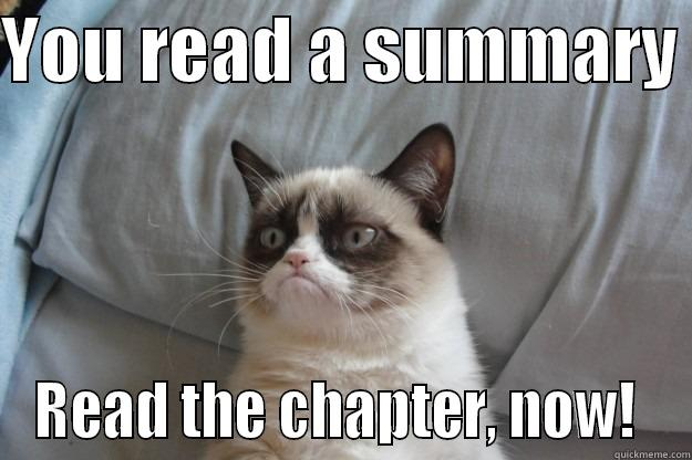 YOU READ A SUMMARY  READ THE CHAPTER, NOW!  Grumpy Cat