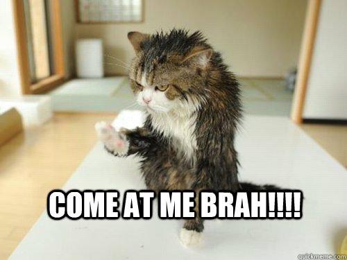 Come at me BRAH!!!! - Come at me BRAH!!!!  Come at me bra