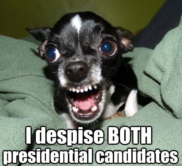 I despise BOTH presidential candidates