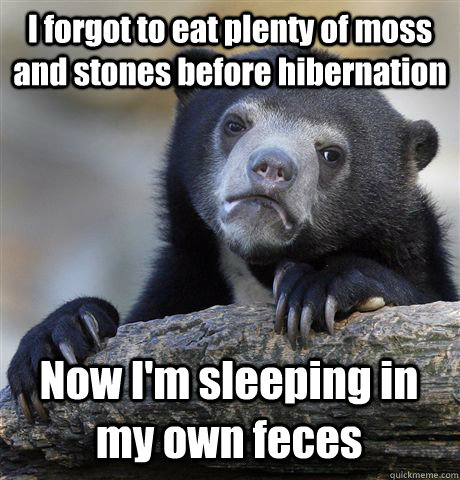 I forgot to eat plenty of moss and stones before hibernation Now I'm sleeping in my own feces - I forgot to eat plenty of moss and stones before hibernation Now I'm sleeping in my own feces  Confession Bear