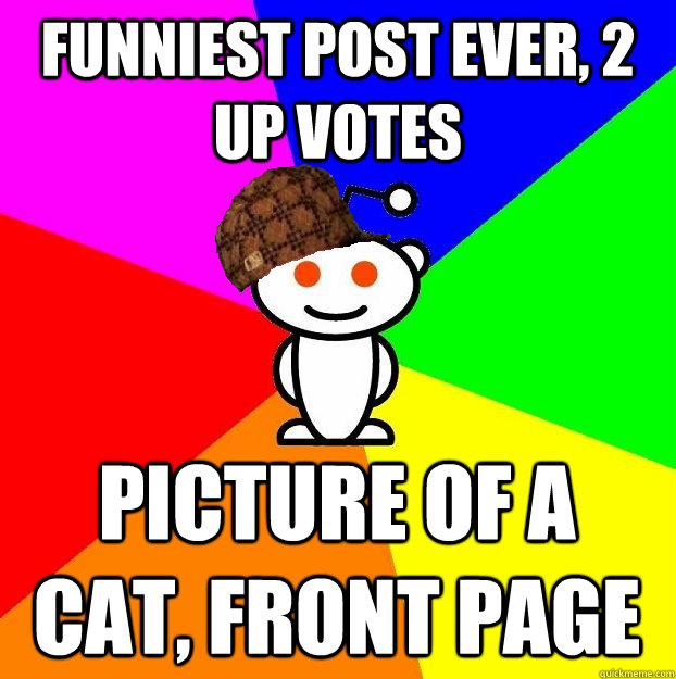 Funniest post ever, 2 up votes picture of a cat, front page - Funniest post ever, 2 up votes picture of a cat, front page  Scumbag Redditor