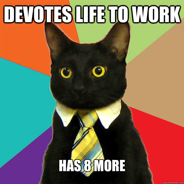 Devotes life to work has 8 more - Devotes life to work has 8 more  Business Cat