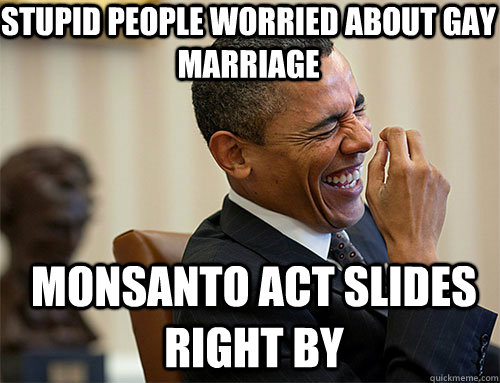 monsanto act slides right by Stupid people worried about gay marriage - monsanto act slides right by Stupid people worried about gay marriage  Obama Laughing
