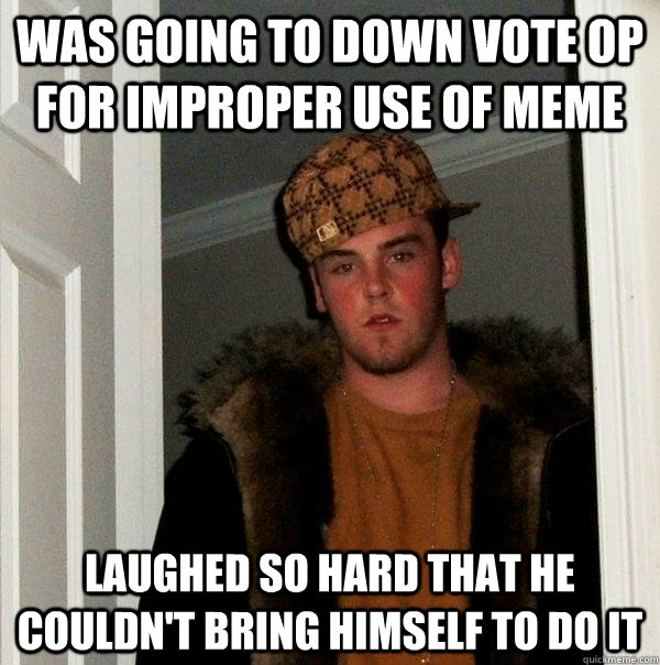 Was going to down vote OP for improper use of meme laughed so hard that he couldn't bring himself to do it - Was going to down vote OP for improper use of meme laughed so hard that he couldn't bring himself to do it  Scumbag Steve