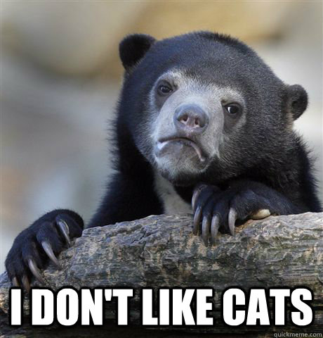 I don't like cats -  I don't like cats  Confession Bear