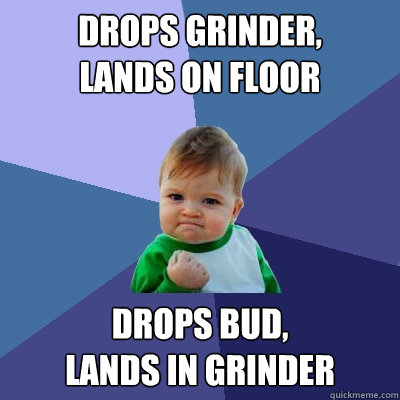 drops grinder,  lands on floor drops bud,  Lands in grinder - drops grinder,  lands on floor drops bud,  Lands in grinder  Success Kid