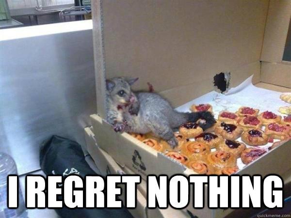 I regret nothing -  I regret nothing  10 Possum