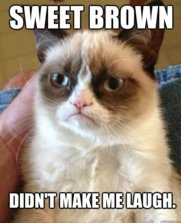 sweet brown didn't make me laugh. - sweet brown didn't make me laugh.  Grumpy Cat