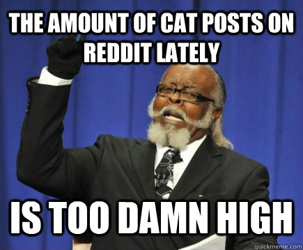 The amount of cat posts on reddit lately is too damn high - The amount of cat posts on reddit lately is too damn high  Too Damn High