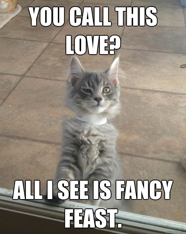 You call this love? All i see is fancy feast.