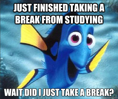 Just finished taking a break from studying Wait did i just take a break? - Just finished taking a break from studying Wait did i just take a break?  optimistic dory