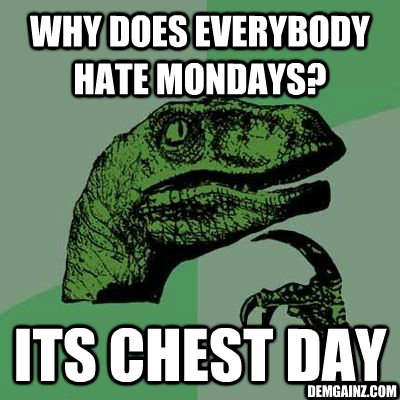 Why Does everybody hate mondays?  its chest day Demgainz.com