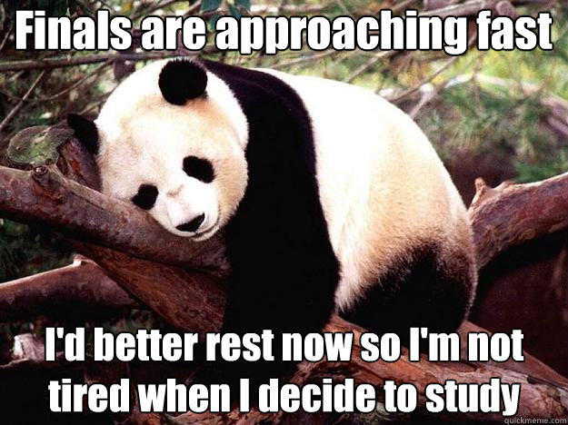 Finals are approaching fast I'd better rest now so I'm not tired when I decide to study - Finals are approaching fast I'd better rest now so I'm not tired when I decide to study  Procrastination Panda