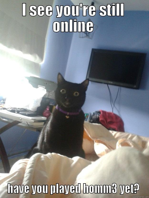 I SEE YOU'RE STILL ONLINE HAVE YOU PLAYED HOMM3 YET? overly attached cat