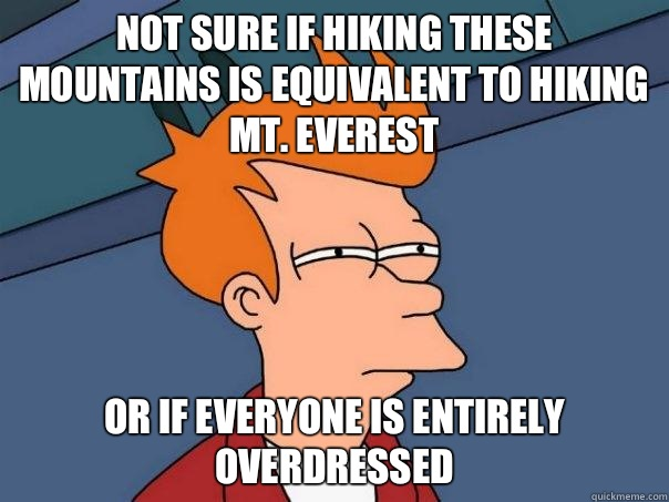 Not sure if hiking these mountains is equivalent to hiking Mt. Everest Or if everyone is entirely overdressed  - Not sure if hiking these mountains is equivalent to hiking Mt. Everest Or if everyone is entirely overdressed   Futurama Fry