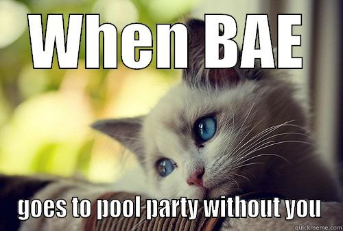 WHEN BAE GOES TO POOL PARTY WITHOUT YOU First World Problems Cat