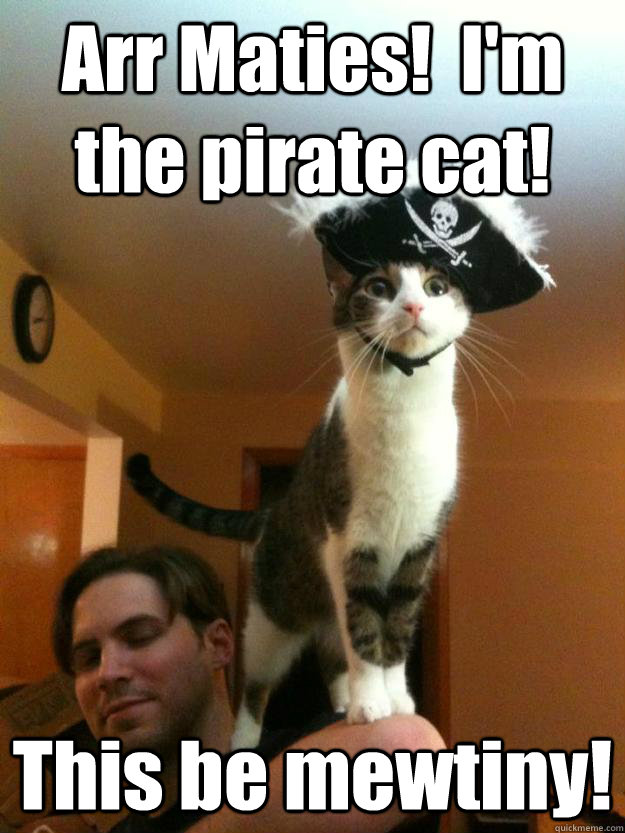 Arr Maties!  I'm the pirate cat! This be mewtiny! - Arr Maties!  I'm the pirate cat! This be mewtiny!  Misc