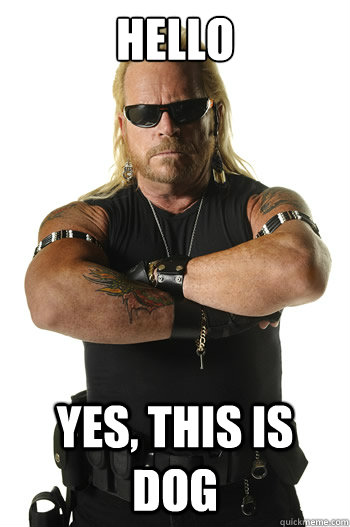 d87abfff00d31a38daa423645bb32d81933fd76c0c748c8e34ca7ac1db137fd0 hello yes, this is dog dog the bounty hunter quickmeme