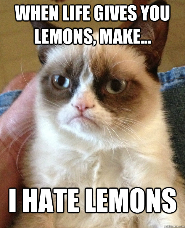 When life gives you lemons, make... I hate lemons - When life gives you lemons, make... I hate lemons  Tard cat shabbos