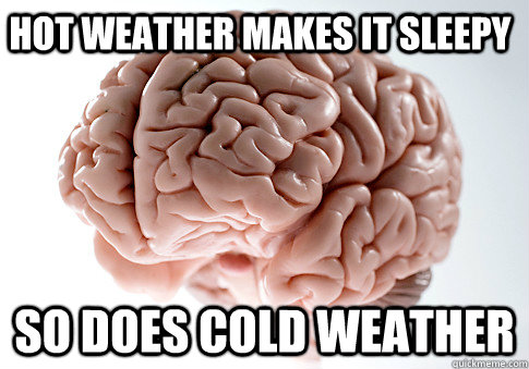 HOT WEATHER MAKES IT SLEEPY SO DOES COLD WEATHER  - HOT WEATHER MAKES IT SLEEPY SO DOES COLD WEATHER   Scumbag Brain