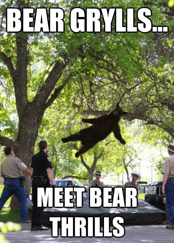 Bear Grylls... Meet Bear Thrills