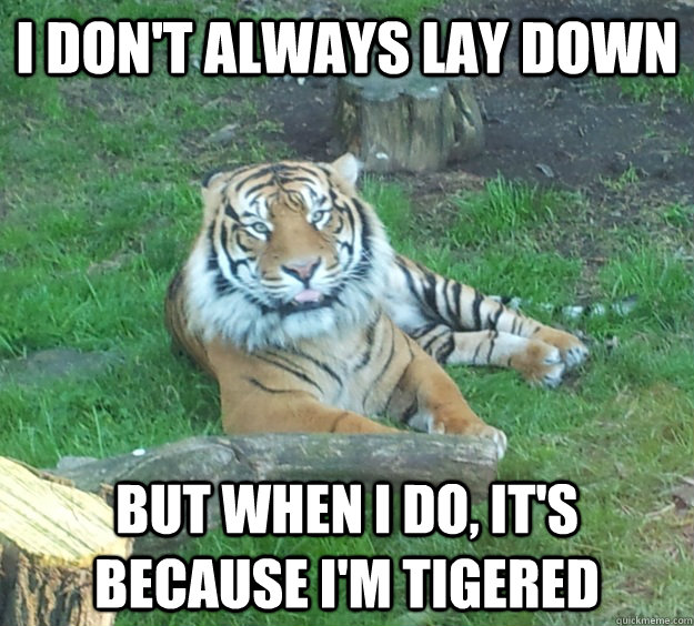 I don't always lay down But when i do, it's because i'm tigered - I don't always lay down But when i do, it's because i'm tigered  Misc
