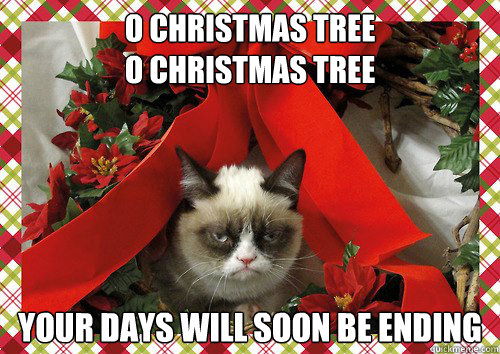 9 best Cat puns images on Pinterest | Animals, Cat puns and Cats humor