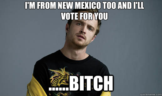 I'm from new mexico too and i'll  vote for you ......bitch