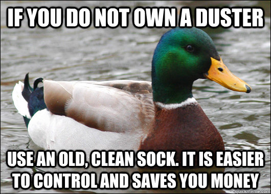 if you do not own a duster use an old, clean sock. it is easier to control and saves you money - if you do not own a duster use an old, clean sock. it is easier to control and saves you money  Actual Advice Mallard