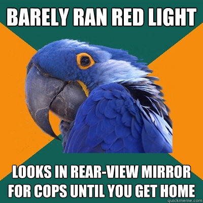 barely ran red light looks in rear-view mirror for cops until you get home - barely ran red light looks in rear-view mirror for cops until you get home  Paranoid Parrot