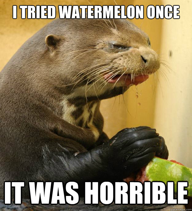 I Tried Watermelon once it was horrible - I Tried Watermelon once it was horrible  Sourpuss otterpants