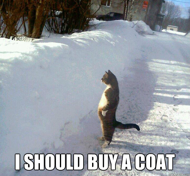 I should buy a coat - I should buy a coat  Misc