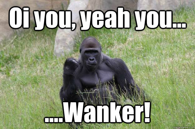 Oi you, yeah you... ....Wanker! - Oi you, yeah you... ....Wanker!  Misc