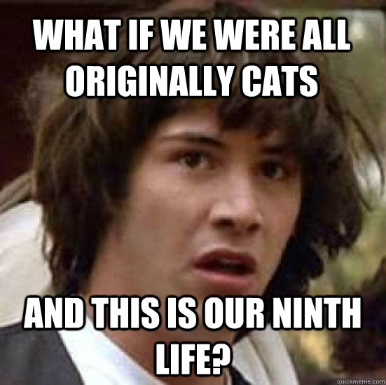 what if we were all originally cats and this is our ninth life? - what if we were all originally cats and this is our ninth life?  conspiracy keanu