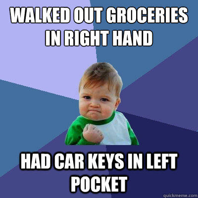 walked out groceries in right hand had car keys in left pocket - walked out groceries in right hand had car keys in left pocket  Success Kid