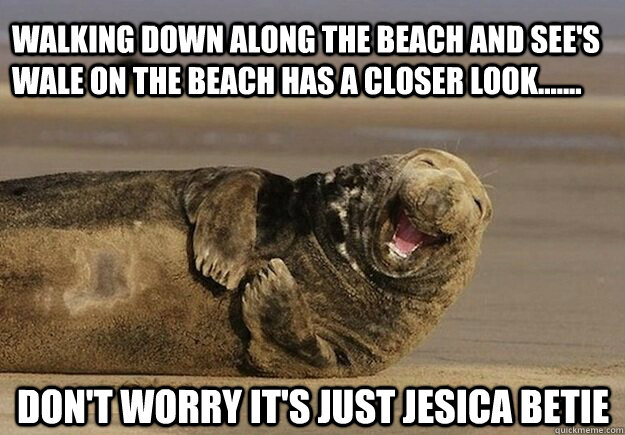 walking down along the beach and see's wale on the beach has a closer look....... don't worry it's just jesica betie - walking down along the beach and see's wale on the beach has a closer look....... don't worry it's just jesica betie  Sea Lion Brian