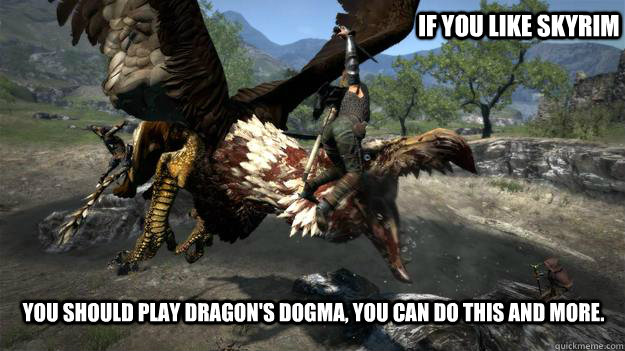 If you like skyrim You should play Dragon's dogma, you can do this and more. - If you like skyrim You should play Dragon's dogma, you can do this and more.  Misc
