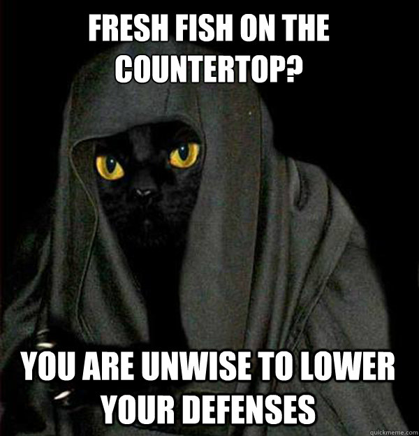Fresh fish on the countertop? you are unwise to lower your defenses
