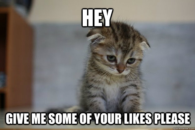 hey give me some of your likes please  Sad Kitten