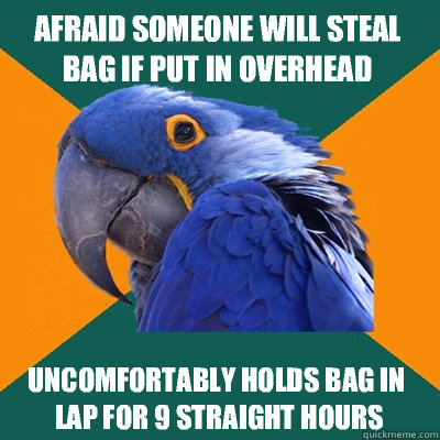 Afraid someone will steal bag if put in overhead compartment Uncomfortably holds bag in lap for 9 straight hours - Afraid someone will steal bag if put in overhead compartment Uncomfortably holds bag in lap for 9 straight hours  Paranoid Parrot